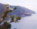 Santa Margherita, Ligure