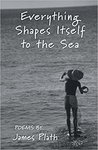 Everything Shapes Itself to the Sea by James Plath