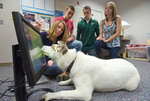 IWU Researchers Hope Apps Teach Dogs New Tricks. by Marc Featherly