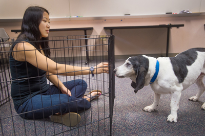 Canines Play Important Role in Research Project.