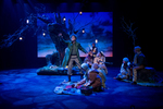 As You Like It 047